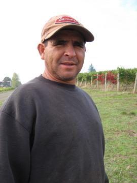 Javier Garcia, Vineyard Crew Leader at Bethel Heights
